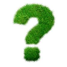 greenwashing-question-mark